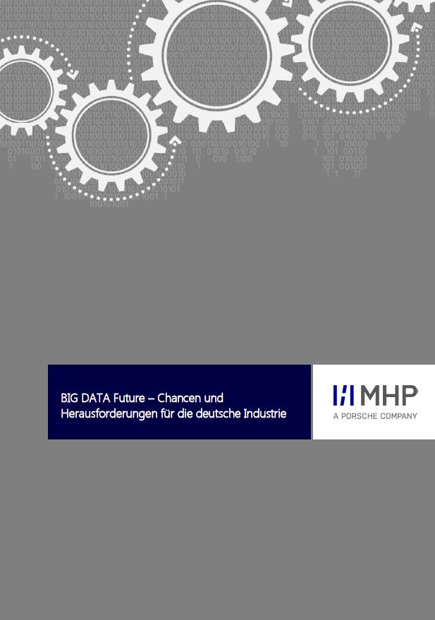 Big DATA Future- Chancen und Herausforderungen für die deutsche Industrie
